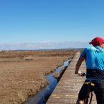 biciklist na drvenom mostu